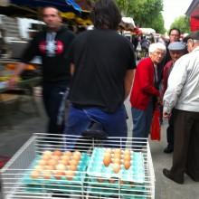 Des ouefs, Rabastens market, France