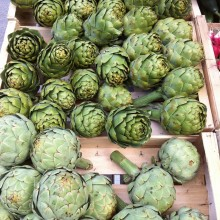Artichokes, Rabastens market, France