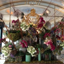 Amazing flowers @ The Four Seasons, Geneva